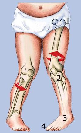 Douleurs aux genoux tedop for Douleur interieur du pied